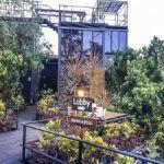 Bagkok Tree House