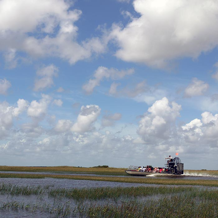 Effects of Climate Change on Everglades